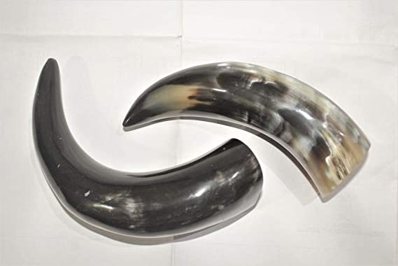 drinking horn importance